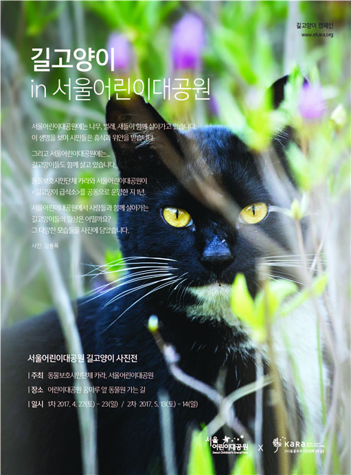 동물보호단체 카라가 서울어린이대공원과 함께 길고양이 사진을 개최한다. 카라