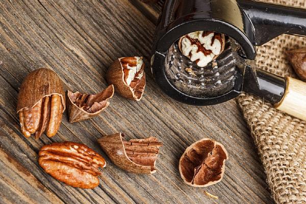 피칸, 항산화제 비타민 E 성분 최대 함유 환절기 피부건강에 도움