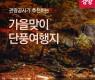 관광공사가 추천하는 '가을맞이 단풍여행지'...